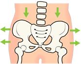 骨盤が左右に開いているメージ